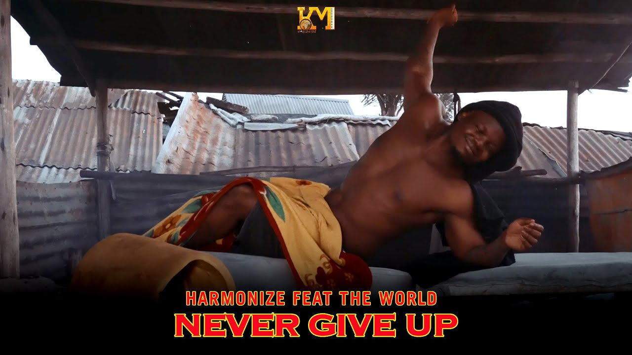 Harmonize - Never Give Up (English Version)
